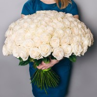 Bouquet of 101 white roses